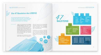 Energielieferanten und Vitalstoffe - Die 47 Bausteine des Lebens